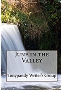 juneinthevalley